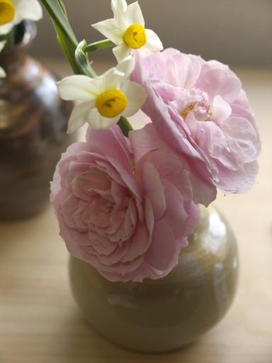 水仙とバラ