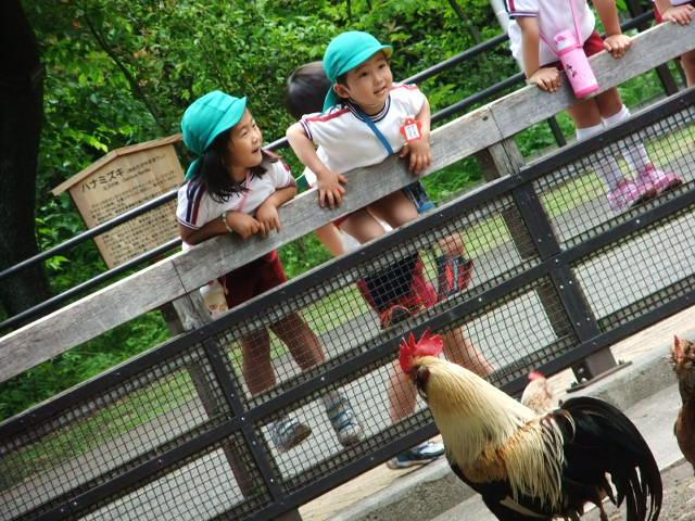 遠足 動物園1
