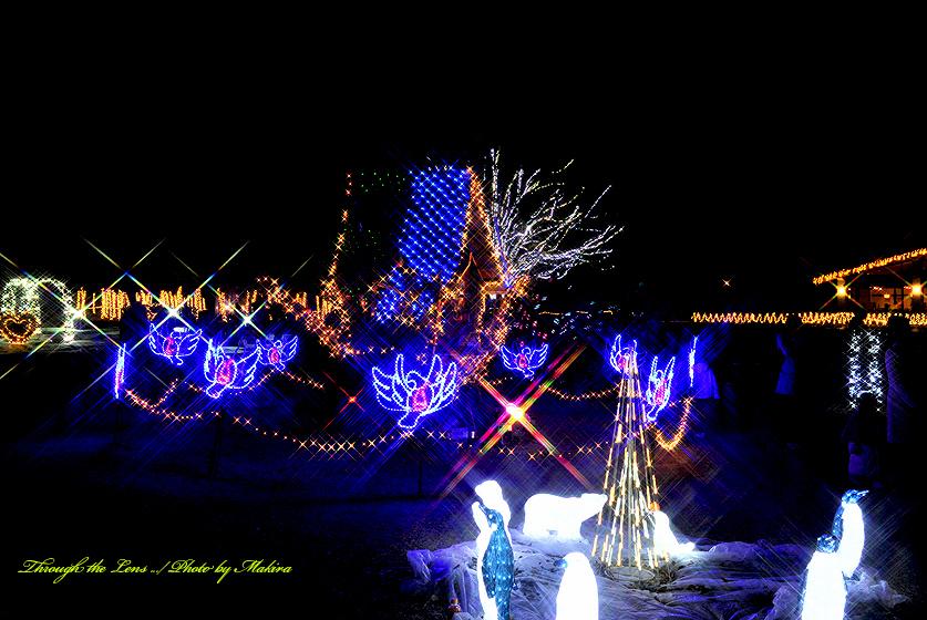 光の動物園とおとぎの家