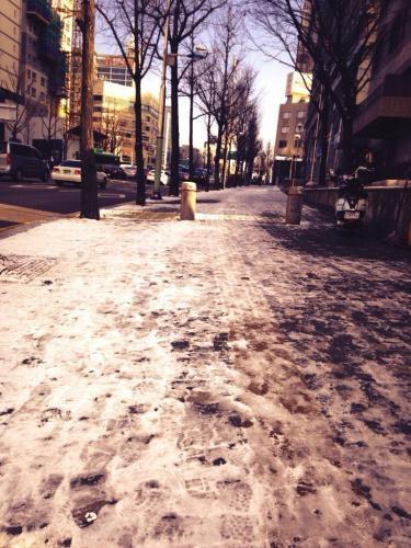 通勤路も雪でツルツルッ。
