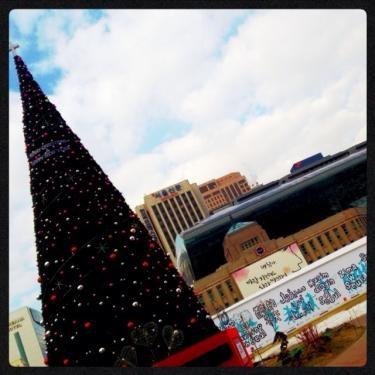 ソウル支庁前に大きなツリーとスケート場がOPENしました!!