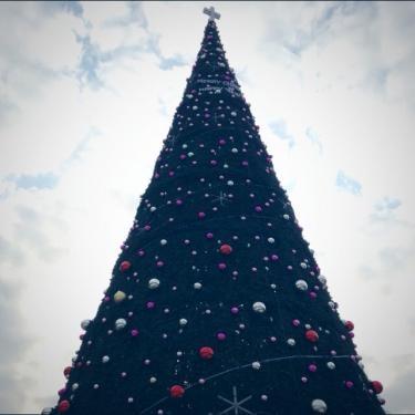 巨大クリスマスツリー!!ソウルで一番かな?・・