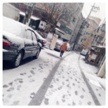 今日はお昼に雪が降り真っ白に・・。