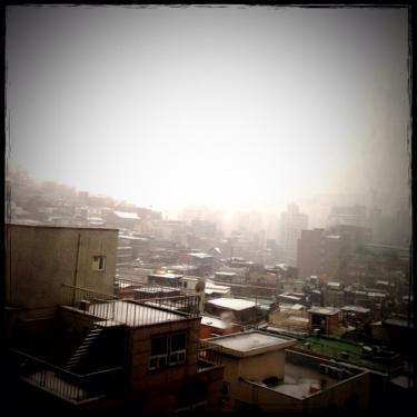 今日は雪が降ったり止んだり。