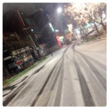 昨日の夜から雪が降り、ホンデも真っ白に‥。