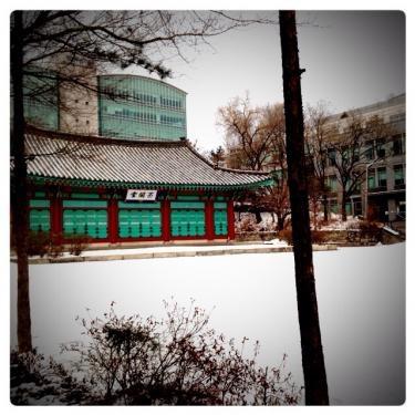一昨日、昨日の雪で学校内各地も銀世界**