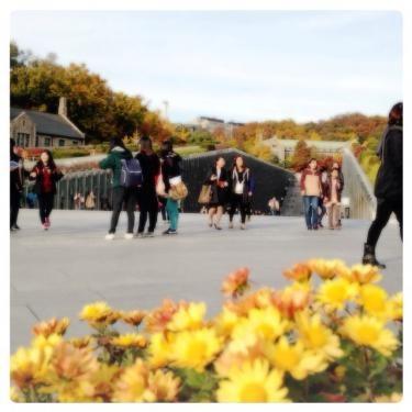 紅葉の時の梨花大学内キャンパス。いつの季節でも記念撮影する人が多いです。