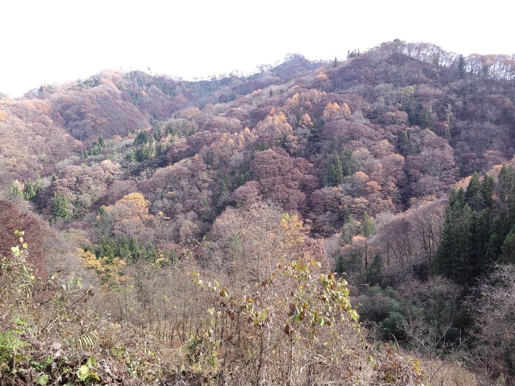 八坂1山々