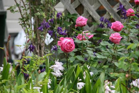 2012-05-19_03_20130222173230.jpg