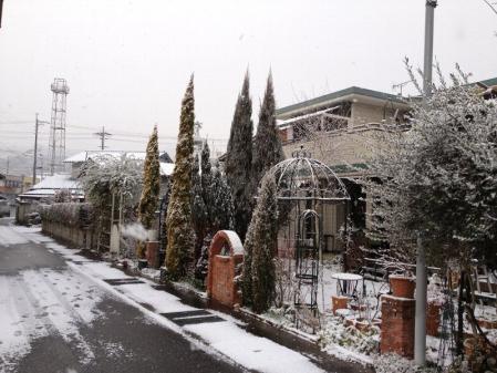 2013-02-24_31.jpg