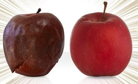 4ヶ月経っても新鮮なままのリンゴって?!