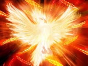 phoenix02.jpg