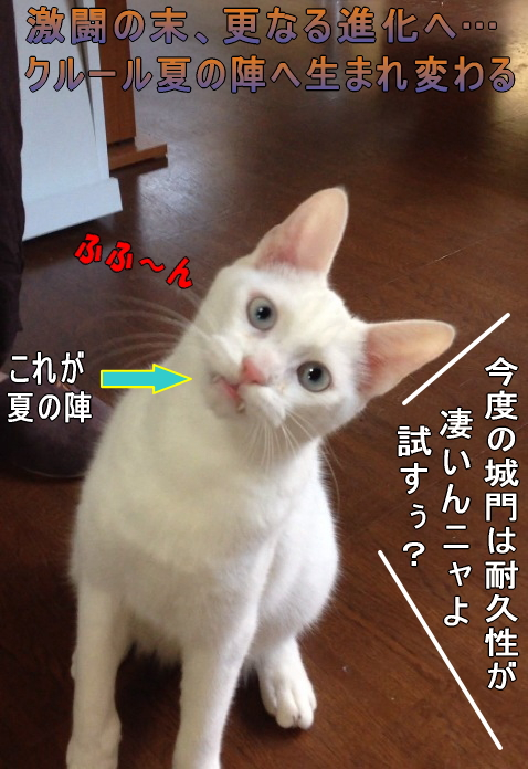 kururu0014.jpg