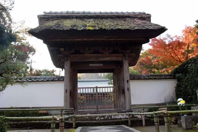 tyoujyuji1