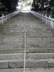 愛宕神社 出世の石段 登りつめてみるかい?