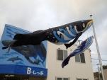 朝からクジラが空を舞っています!(2014/1/1 B-しっぷ)