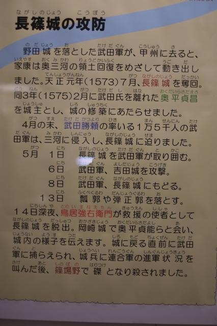 13年6月12日 (35)