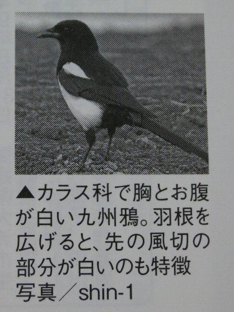 IMG_0078-1.jpg