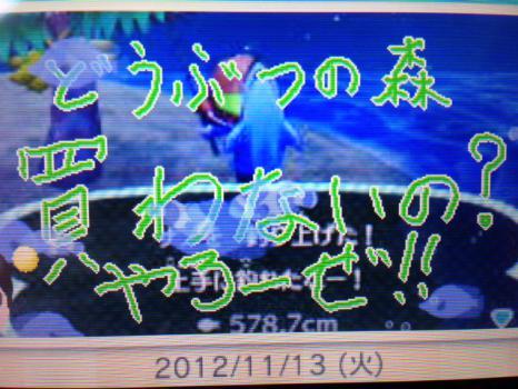 20121113_2.jpeg