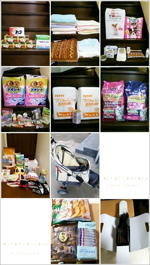 goshien_0112.jpg
