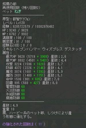 4_9.jpg
