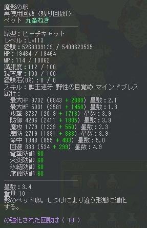 neko3_4.jpg