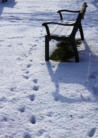 雪の国から2013⑤