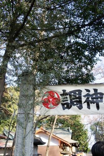 初詣2014 調神社へ