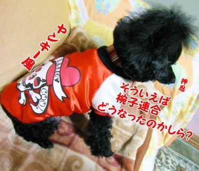 001_20121021210143.jpg