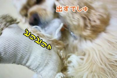004_20120827211854.jpg