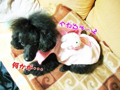004_20121021210143.jpg