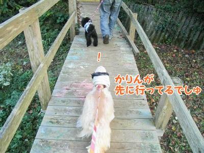 004_20121031211737.jpg
