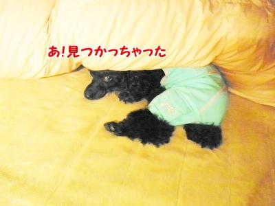 004_20121106221218.jpg