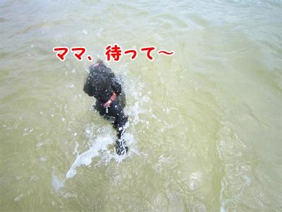 005_20120820201554.jpg