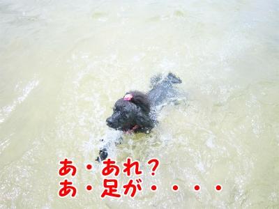 006_20120820201554.jpg