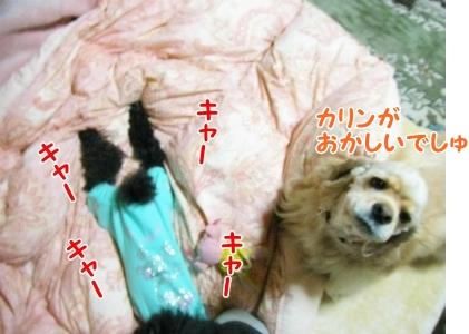 006_20121029215529.jpg