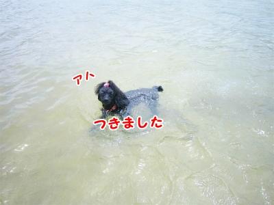 007_20120820201553.jpg