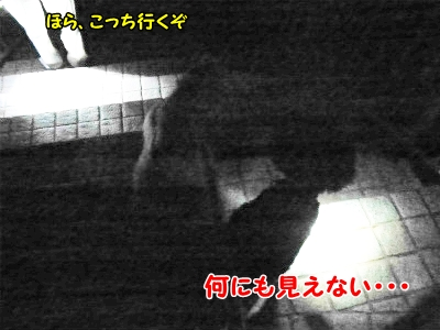 008_20121022215433.jpg