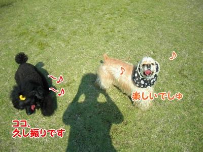 009_20120603213228.jpg