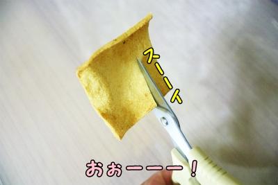009_20120808211708.jpg
