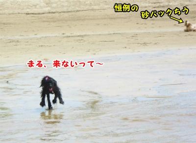 010_20120820201553.jpg