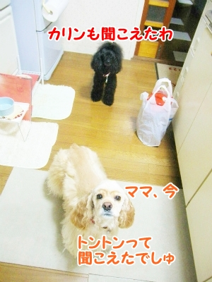 011_20120907212725.jpg