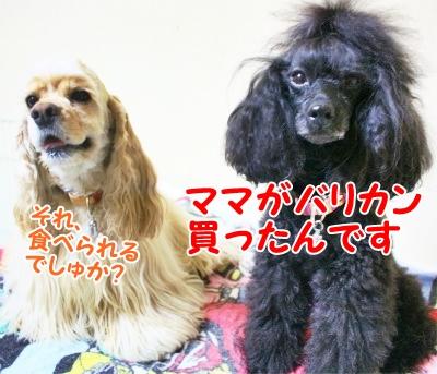 013_20120831210804.jpg