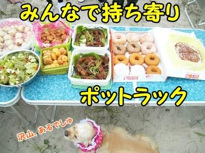 015_20121017212647.jpg