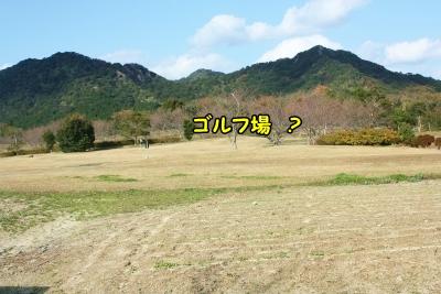 017_20121210223311.jpg