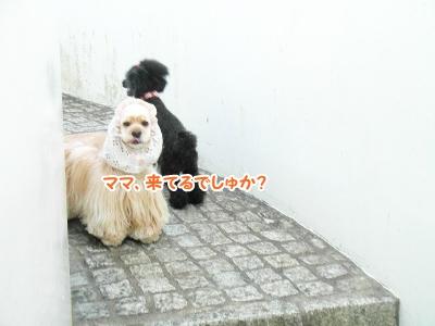 019_20121011225526.jpg