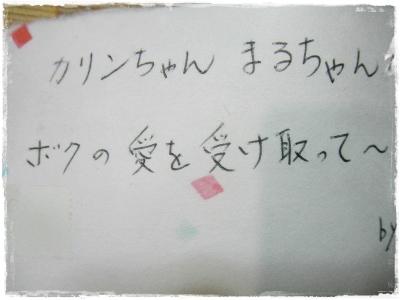019_20130331222730.jpg