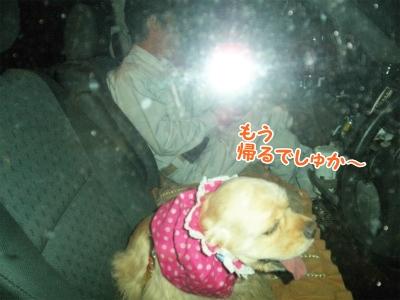 020_20121022220127.jpg