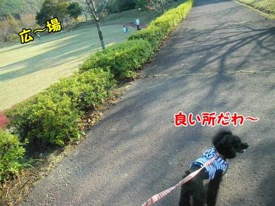 020_20121031213501.jpg