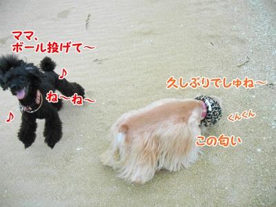 020_20121111212719.jpg
